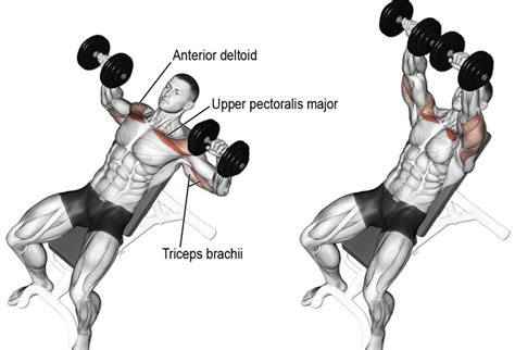 11 Effective Ways To Improve Your Bench Press – Fitness Volt
