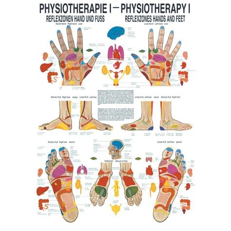 """PhysioExpressNord Shop 